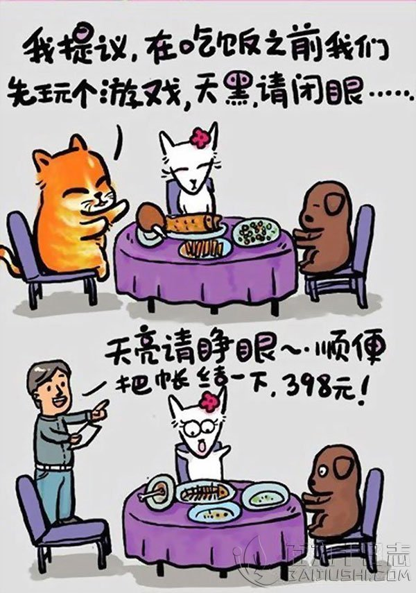 猫言猫语中的人生歪理,值得一看_www.baijiushi.com