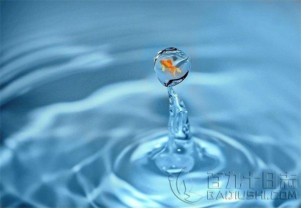 鱼和水的故事_www.baijiushi.com